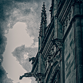 Gargoyles by Nancy Merolle - Buildings & Architecture Other Exteriors ( scary, building, dark, gargoyles, darkness )