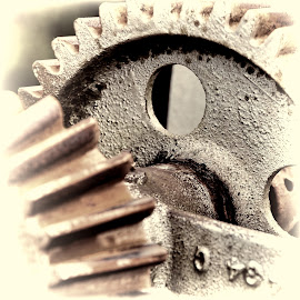 Geared Up by Dorothy Plumb - Artistic Objects Industrial Objects ( turn, sepia, cogs, rusty, circle, steel, gears, iron, turning, metal object, circles, industrial, gear, metal, cog, brown, industry, rust, holes, hole )