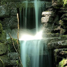 The secret waterfall by Damien Brearley - Nature Up Close Water ( water, waterfall, av )