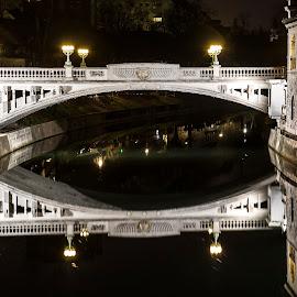 by Rado Krasnik - Buildings & Architecture Bridges & Suspended Structures ( lights, reflection, night, bridge, river )