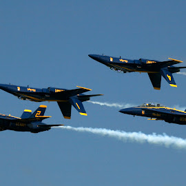 Blue Angels by Chris Arbeene - Transportation Airplanes