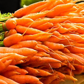 Carrot by Vinoth Kumar - Food & Drink Fruits & Vegetables ( carrot, fresh carrot, carrot pile, bunch, lots of carrot )