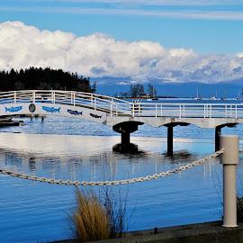 Walking bridge over Lagoon by Carol Leynard - City,  Street & Park  City Parks ( clouds, water, blue, walkway, bridge )