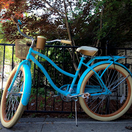 Blue Bike Boston by David Stone - Transportation Bicycles ( parked bicycle, bike, boston, city bike, blue bicycle, city, bicycle,  )