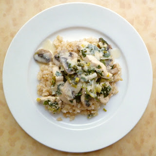 Chicken and Leek Stroganoff