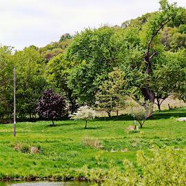 taylor hills by Jon Radtke - City,  Street & Park  City Parks ( taylor hills )