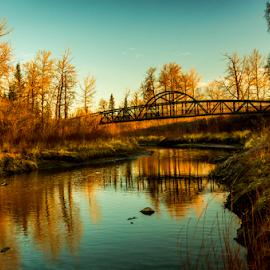 Edmonton City Park by Joseph Law - City,  Street & Park  City Parks ( blue sky, bushes, sunny, trees, reflections, sunshine, bridge, edmonton, city park, evening, river )