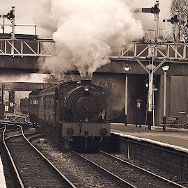 Steam  comes  in  twos by Gordon Simpson - Transportation Trains
