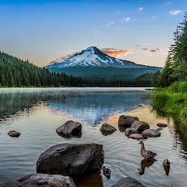 Early Morning Sunrise at Trillium Lake by Chris Bartell - Landscapes Mountains & Hills ( oregon, wilderness, mountain, ducks, lake, sunrise, mt hood )