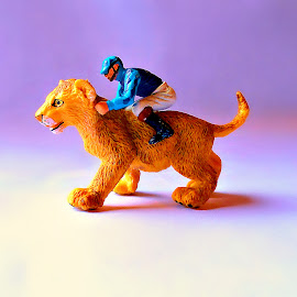 Yee Haw by Vince Scaglione - Artistic Objects Toys ( jocky, lion, cat, toy, object, cub )