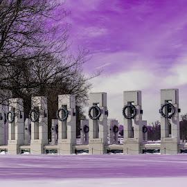 Purple Haze by Hugh Clarke - Buildings & Architecture Statues & Monuments ( wwii memorial, wwii, igdc, winter solace, winterstorm jonas, clarke photo studios, acreative dc, winter, snow, blizzard 2016, hugh a clarke 2016, sony photo, snow day, sony a7s, january 2016, fotodc )