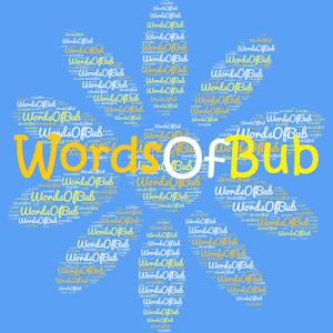 Cover art WordsOfBub