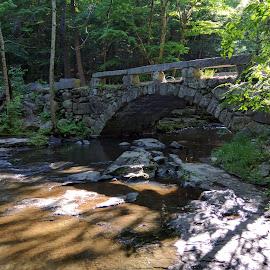 Vaughn Woods Nature Trail by Moe Cusick - Buildings & Architecture Bridges & Suspended Structures ( nature trail, outdoors, natural beauty, bridge, summer,  )
