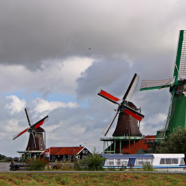 Windmills by Paulo Leitão - City,  Street & Park  Vistas ( windmills,  )