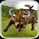 Real Angri Bull