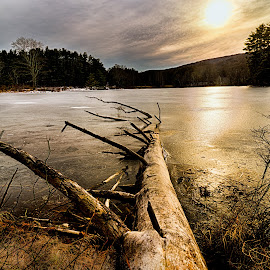 Late afternoon on a lake by Ronny Mariano - Landscapes Waterscapes ( water, harriman park, sclouds, afternoon light, 2016, plants, lake, landscape, harriman, city, winter, sky, tree, nature, sunset, weather, trees )