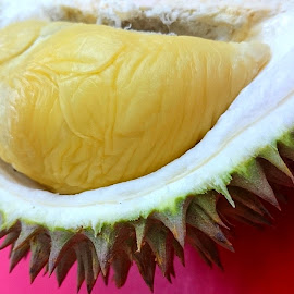 Highland 24 Durian by Jo-Ann Tan - Food & Drink Fruits & Vegetables