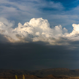 Thunderhead by Beth Staub - Landscapes Weather ( stormy, clouds, blue, white, weather, thunderhead, beauty, gold, landscape, storm )