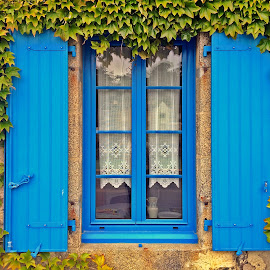 Window by Dobrin Anca - Buildings & Architecture Architectural Detail ( window, sunny, green, street, brittany )