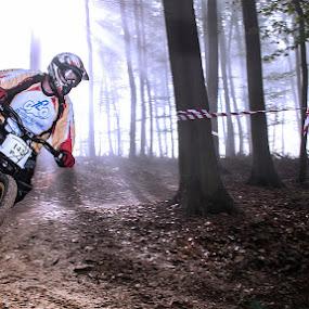 Cico by Mario Novak - Sports & Fitness Cycling