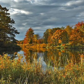 The Autumn Lagoon by Carolyn Taylor - Landscapes Waterscapes