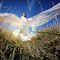 dejan nikolic_fotograf_krusevac_svadba_vencanje_wedding_fotograf za svadbu_aleksandrovac_paracin_beograd_sunset.jpg