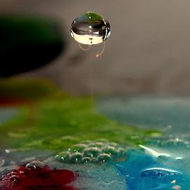 water drop by Renata Ivanovic - Abstract Water Drops & Splashes ( abstract, water, drop, fall, close up )