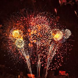 sweet glow of fireworks by Deborah Felmey - Public Holidays July 4th ( firework, waterscapes, baltimore, waterscape, inner harbor, harbor, fireworks, domino sugar,  )