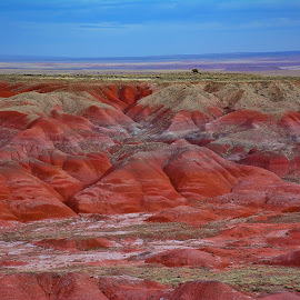 The Painted Desert in Arizona by Arturo Gonzalez - Landscapes Deserts ( desert, arizona, painted desert, landscape photography, landscape )