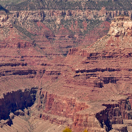 Temples? by Savannah Eubanks - Landscapes Deserts ( red, national park, canyon, arizona, temples, grand canyon, desert )