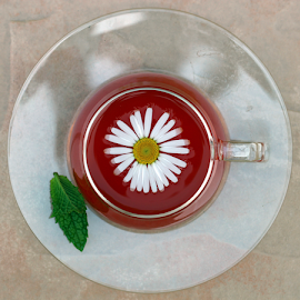 Herbal Tea by Dipali S - Artistic Objects Cups, Plates & Utensils ( cup, camomile, aroma, daisy, leaf, tea, taste, mug, nature, drink, ingredient, pink, medicine, flower, petal, wild, refreshment, alternative, health, rose, sweet, liquid, beverage, herb, food, hot, conceptual, natural, therapy, golden, raw, homeopathic, plant, concept, aromatic, beauty, spring, blossom, fresh, glass, transparent, green, beautiful, mint, peppermint, bloom, relaxation, morning, organic, medicinal, summer, healthy, freshness, herbal, vitamin, garden, scented, teacup )