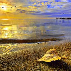 by DE Grabenstein - Landscapes Beaches