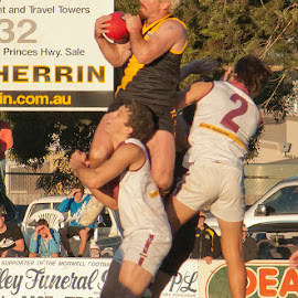 The Hanger by Michael Robinson - Sports & Fitness Australian rules football
