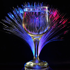 by Sonja VN - Artistic Objects Glass
