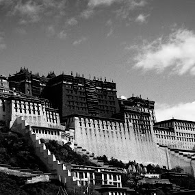 Potala Palace by Garrett Dyer - Buildings & Architecture Public & Historical ( potala, dalai lama, tibet, palace, pwcbuilding )