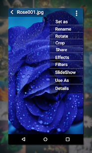 Gallery Screenshot