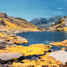 mountain lake by Costin Mugurel - Landscapes Mountains & Hills ( mountains, nature, waterscape, lake, landscape )