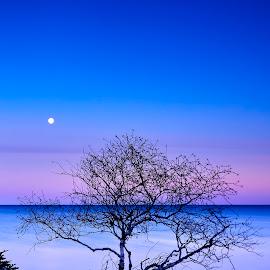Moonrise Over Lake Superior by Mike Woodard - Landscapes Sunsets & Sunrises ( moon, lake superior, night )