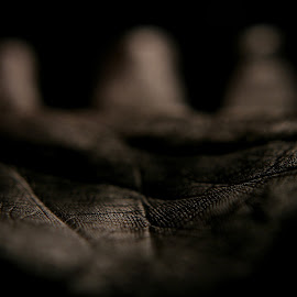 Palm  by Mike Thornberry - Abstract Macro ( hand, abstract, macro, shallow dof, body part )