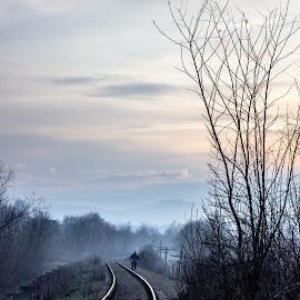 Railway by Oana Stefana - Uncategorized All Uncategorized ( shepherd, railway, blue hour, sunset, lines )