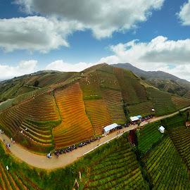 Argapura by Doeh Namaku - Landscapes Mountains & Hills
