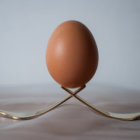 Fork and Egg by Marc Rossmann - Artistic Objects Cups, Plates & Utensils ( shell, balance, photomarc, rossmann, fork, gold, locked, egg )