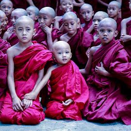 Little Monks  by Htin Aung - Babies & Children Children Candids ( myanmar, monk, innocent )