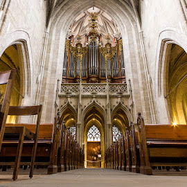 Bern Munster by Amit Aggarwal - Buildings & Architecture Places of Worship ( interior, nextgenclicks, benches, church, munster, bern, switzerland, symmetry )