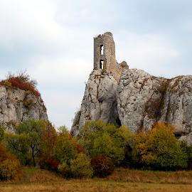 Ruin of castle by Petr Homola - Landscapes Travel ( pálava, krajina )
