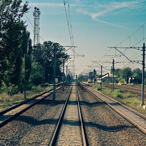 DSC03300-1.jpg