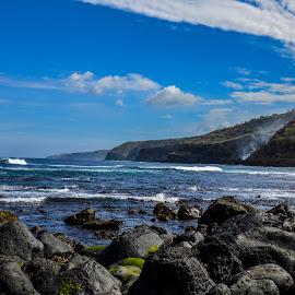 Skalna obala by Bojan Kolman - Landscapes Beaches