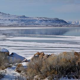Bridger bay, Great salt lake state park Utah by John Dodson - Landscapes Beaches