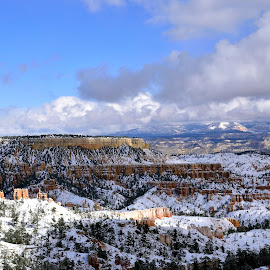 First snowfall in Bryce Canyon National Park  by Gosia Lukowiak - Landscapes Mountains & Hills