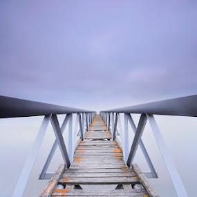 The Way... by Rui Catarino - Buildings & Architecture Bridges & Suspended Structures ( amanhecer, pontão, sobralinho )